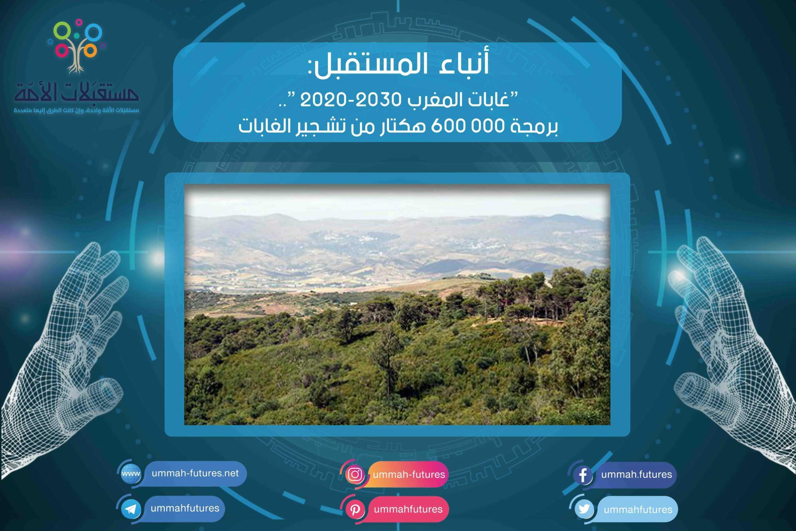 """""""غابات المغرب 2020-2030 """".. برمجة 000 600 هكتار من تشجير الغابات"""